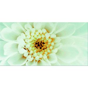 DIAGO INSERTO FLOWER B 29,7X60