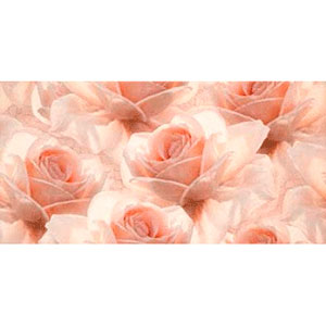 ROYAL GARDEN INSERTO FLOWER 29,7X60