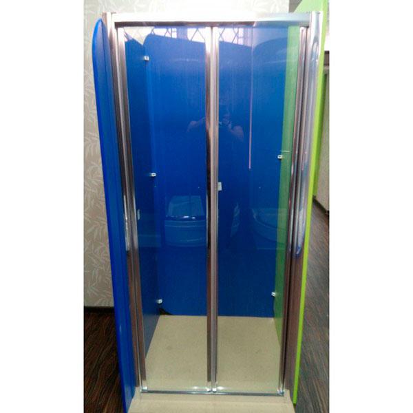 Душевая дверь ZDM-110-2 110х190