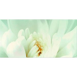 DIAGO INSERTO FLOWER C 29,7X60