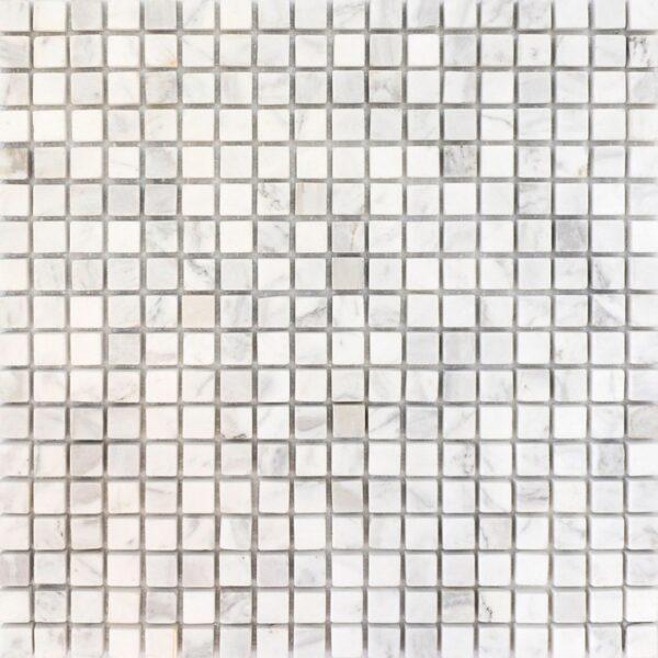 мозаїка SPT025
