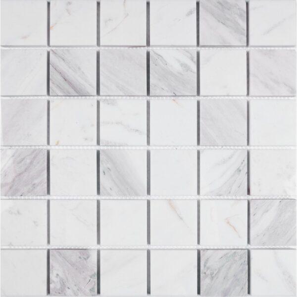 мозаїка SPT26